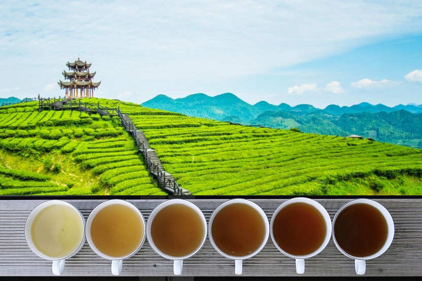 Six Colors for One Kind of Tea